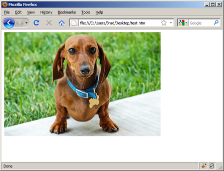 How to Insert an Image in XHTML